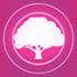 빛나는 캐슈나무 3