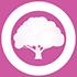 빛나는 캐슈나무 1